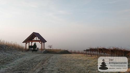 SunriseRun in den Weinbergen über dem Selztal