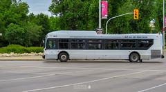 Winnipeg, Manitoba (TO416 Original) Tags: 2018 canada manitoba motoroilphotography to416 transport travel winnipeg ca tourism touristattraction tourist attractions tofouronesix to416original downtown winnipegtransit bus newflyer