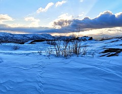Afternoon in Komsa (maybrittballo) Tags: komsa alta finnmark northofnorway nordnorge norway norge winter winterlight