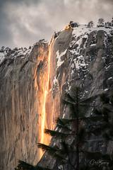 Firefall II (sberkley123) Tags: california d850 nationalparks yosemite waterfalls sunset usa nikon horsetailfall firefall