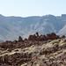 Roques de Garcia and El Teide