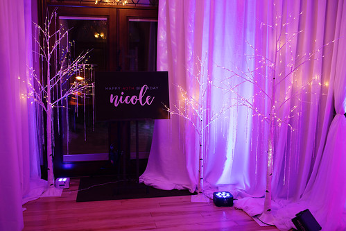 """Fire and Ice Party • <a style=""""font-size:0.8em;"""" href=""""http://www.flickr.com/photos/81396050@N06/46549484245/"""" target=""""_blank"""">View on Flickr</a>"""
