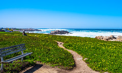 The Blue Path (alessio.vallero) Tags: pacificgrove california unitedstatesofamerica us monterey ocean rocks blue bench path