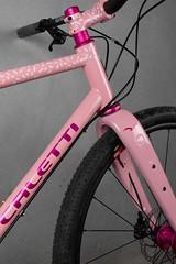 4U0A7712.jpg (peterthomsen) Tags: coveypotter envecomposites pink santacruzbicycles chrisking scrambler steel rodeolabs nahbs caletti