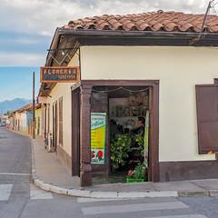 Flower shop (Arturo Nahum) Tags: arturonahum putaendo valparaisoregion chile fachadas facades