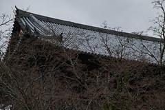 SDQ_1235 (koyaman3422) Tags: 京都 kyoto sigma sdquattro 1770mm 南禅寺