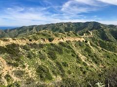 Catalina Island, CA (- Adam Reeder -) Tags: y2019 m03 d15 lat330 lon1180 los angeles california united states photo jpg apple iphone x catalina island ca