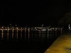 img_0683 (Ricardo Jurczyk Pinheiro) Tags: reflexo água iluminação árvoredenatal lagoarodrigodefreitas riodejaneiro