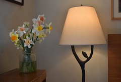 light sources (rootcrop54) Tags: daffodil bouquet daffodils narcissus blooms flowers naturallight glow glowing treelamp