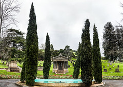 kraft (pbo31) Tags: mountainview oakland california eastbay alamedacounty city color nikon d810 march 2019 boury pbo31 cemetery grave death panoramic large stitched panorama rain wet upper rockridge