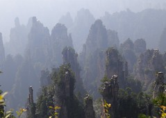 IMG_4833 (chazheng) Tags: zhangjiajie china asia city canon culture art centuries landscape famous wonderful interesting perspective flickr attraction fullframe
