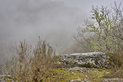 La marche (domingo4640) Tags: lot cajarc causse brume rocher quercy loxia loxia85 loxia2485 paysage departementdulot midipyrenees