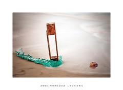 Débris de mer... (Anne-Françoise LAURANS) Tags: mer pose longue débris