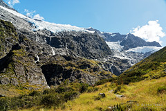 20190207-28-Rob Roy Glacier (Roger T Wong) Tags: 2019 nz newzealand robroyglacier rogertwong sel24105g sony24105 sonya7iii sonyalpha7iii sonyfe24105mmf4goss sonyilce7m3 southisland westmatukitukivalley bushwalk glacier hike landscape outdoors tramp trek walk