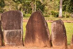 Ceremonial Park Caguana. (Toñito Alvarez Photography) Tags: petroglyphs petroglifos indigenas indigenous historia utuado puertorico indios parque escultura park turismo tourism ceremonial