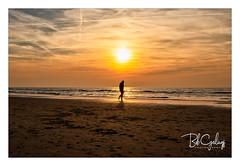 Happy Feet (Bob Geilings) Tags: sunset sea beach shore nordsea bergenaanzee mood silhouette stroling bobgeilings