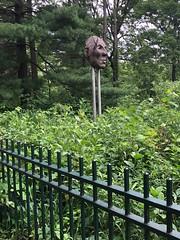 Fence with Face (Melinda * Young) Tags: hff fencefriday minnehaha fence shrubs park greenery face sculpture nativeamerican public minneapolis falls iron indigenous minnehahapark dakota littlecrow