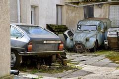 DSC_4285 (azu250) Tags: oldtimerbeurs reims 32 salon champnois belles champenoises 32eme 2019 voitures collection oldtimer car citroen 2cv ak350 cx 2500d
