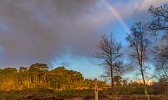 Rainbow (nicklucas2) Tags: rainbow cloud landscape tree fence weather