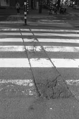 Lead me (Arne Kuilman) Tags: amsterdam nikon fm3a vivitar 28mm luckyshd iso100 id11 7minutes homedeveloped stock analogue film zebra crossing concrete street straat lines