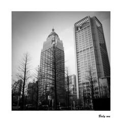 201903-7 Taipei city (BALY WU) Tags: taipei city hasselblad 60mm kodak trix 400 503cx taiwan 遠雄大樓 film 黑白照 暗房 6x6 台北信義區