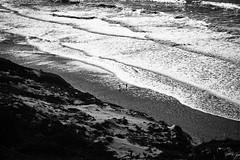 Playing in the beach (mgschiavon) Tags: blackandwhite blackwhite bw beach sea california contrast sunny