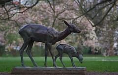 Deer with fawn (Gutnix) Tags: park sculpture deer fawn spring volksgarten düsseldorf