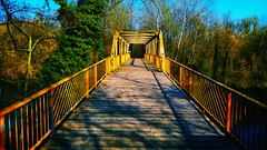 Zehlendorfer Stichkanal (Antiteilchen) Tags: planken wood holz metall metal geländer fahrradweg fahrrad teltowkanal wald brücke bridge germany deutschland zehlendorferstichkanal zehlendorf berlin