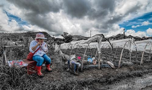 Farmhand's Lunch