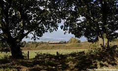 1450 (Lewis Maddox) Tags: svr severn valley railway steam trains worcestershire bridgnorth bewdley shropshire autumn
