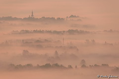Misty morning (darko.jakovac) Tags: nikon d750 nikond750 sigma 150600 sigma150600 contemporary telephoto dolenjska slovenija slovenia slowenien discover explore trip travel traveling relax view viewpoint ngc outdoor outdoors outside hiking adventure perspective activities roam visit environment explorers ecological nature landscape scenery scenic idyllic beauty beautiful season seasonal unique perfect superb magnificient stunning impressions outstanding popular perfection colors colorful postcard wallpapper countryside rural sunrise misty fog morning church natural landscapes