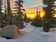 High Park Campsite (kevin-palmer) Tags: highpark bighornmountains bighornnationalforest wyoming january winter snow snowy evening sunset dusk color colorful yellow gold golden orange clouds campsite tent trees iphone6 bigagnes hdr cold