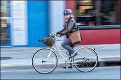 Linus Pilot - Have Basket - Will Travel (Dan Dewan) Tags: dandewan bicycle canon7dmarkii canonef70200mm14lisusm street bike motion monday colour spring portrait cyclist girl lady ottawa bankstreet basket woman photographist ontario blue glasses © 2016 canon