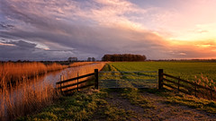 Pre Winter Light (Alfred Grupstra) Tags: landscape sundown canal meadow trees clouds nature ruralscene outdoors scenics sky summer grass farm fence sunset autumn beautyinnature nonurbanscene field agriculture cloudsky tree nopeople