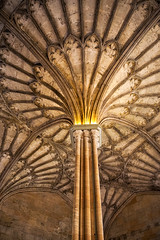 ceiling of Oxford University (Earl Robicheaux Photography, LLC) Tags: worldregionscountries europe unitedkingdom oxfordshire oxford ceiling architecture building architecturaldetail arch arched column faucet schools university college england
