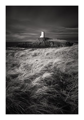 Llanddwyn Lighthouse - January 15th (Edd Allen) Tags: wales northwales anglesey llanddwynlighthouse lighthouse snowdonia sea seascape seaside shore shoreline atmosphere sunrise grass wind atmospheric clouds landscape uk nikond810 zeissdistagon 18mm bw blackandwhite infrared