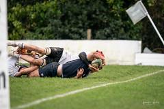 MEDALLIONS V CCB-05385 (photojen10) Tags: methody mcb rugby campbell ccb win shield
