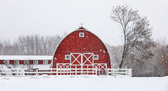 The Red Barn in St. Ignatius (wyojones) Tags: montana stignatius clouds snow winter trees feburary stignatiusmission redbarn jesuitsdairy browns tingey communitytheater weddings events tree snowing snowfall fence