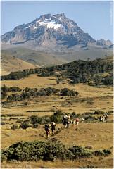 Towards Mawenzi (channel packet) Tags: tanzania kilimanjaro climb hike mawenzi africa mountain davidhill