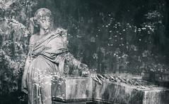Guide My Spirit Home (Charles Opper) Tags: angel bonaventurecemetery canon georgia mariebarclaytaliaferro savannah spring blackandwhite doubleexposure floral light memorial monochrome nature sculpture spirit statue