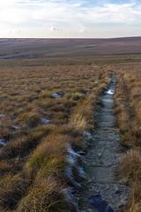 Pennine Way (l4ts) Tags: landscape derbyshire peakdistrict darkpeak blackhill pennineway nationaltrail moorland frost