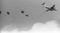 平成31年第1空挺団降下訓練始め(7) (Dinasty_Oomae) Tags: 白黒写真 白黒 monochrome blackandwhite blackwhite bw outdoor 千葉県 千葉 chiba 習志野市 習志野 narashino 陸上自衛隊 jgsdf 自衛隊 jsdf 降下訓練始め 飛行機 airplane 航空自衛隊 jasdf c1 川崎c1 パラシュート paratrooper parachute paratroop