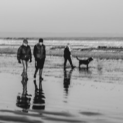 Monochrome day (Marion McM) Tags: figures people dog beach reflections blur sea water intentionalblur intentionalcameramovement blackandwhite monochrome st andrews fife scotland 2019 canoneos760d