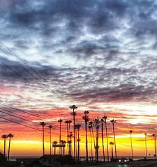 Pacific Coast Hwy. California (Winnie02) Tags: malibu california colorful vibrant beach sun serene romantic palmtree colors clouds sunset