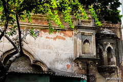 Opaque Window, Opaque Veranda (shamahzoha) Tags: arch architecture old ancient worn aged repaired leaves tree sunlight branches rays daylight oldcity olddhaka building ornate beauty beautiful vibrant abstract design veranda window balcony dhaka bangladesh streetphotography