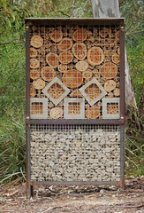 Bee B'n'B (mikecogh) Tags: adelaide parklands bees box nest hive conservation logs