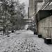 Bleak Victoria Street Winter