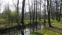 2014-03-30 Spring (beranekp) Tags: czech teplice teplitz chateau garden garten spring tree baum