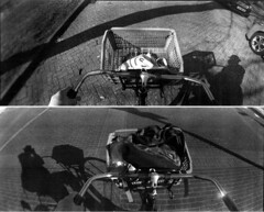 Basket Biking (selyfriday) Tags: selyfriday wwwnassiocomempty nassiocom horizon horizonperfekt lomo lomocrappy film swing panorama 35mm nalogue caffenol deltastd 25˙c 9minutes picoprint 200iso colour basket biking shadow dutch nederland ne therlands holland zaan zaandam zaans zaanstad