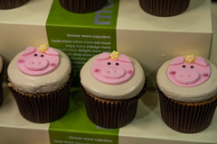 """More – Patty RothmanBacon Maple mini cupcakes – maple bacon cake frosted with brown sugar maple buttercream topped with house made bacon brittle – Yum!! • <a style=""""font-size:0.8em;"""" href=""""http://www.flickr.com/photos/124225217@N03/33687605728/"""" target=""""_blank"""">View on Flickr</a>"""